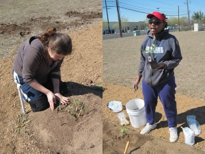 Joy Spradling / Phyllis Tennie Garden Leaders